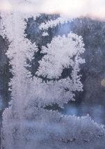 Frost som ligner en gråtende engel. Foto Kari-Anne Florst som ligner en gråtende engel. Foto Kari-Anne Flor