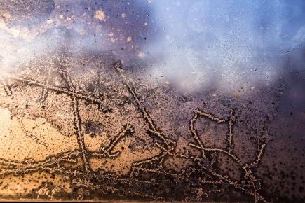 Rim på vindusrute. Foto Kari-Anne Flor